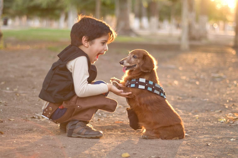 Crianças que crescem com animais, desenvolvem maior inteligência emocional e compaixão.
