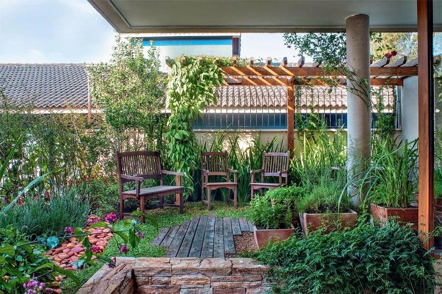 Quais são as plantas indicadas para quintal com cachorro?